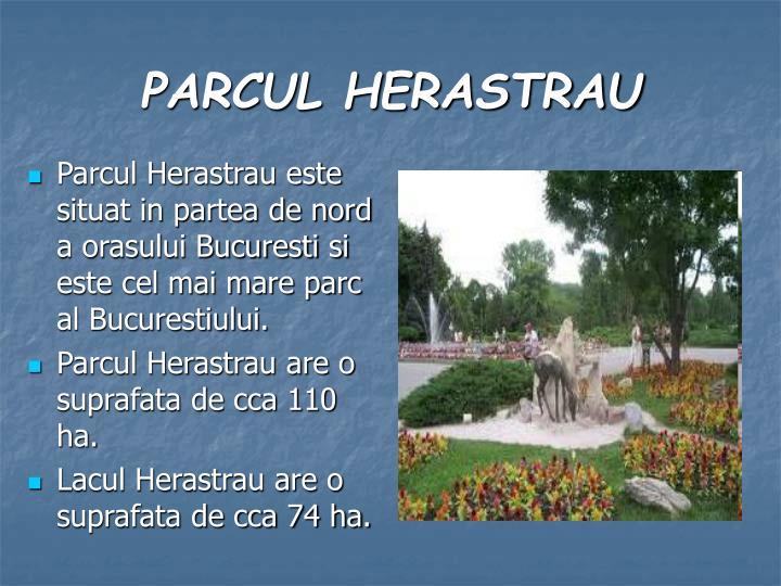 Parcul Herastrau este situat in partea de nord a orasului Bucuresti si este cel mai mare parc al Bucurestiului.