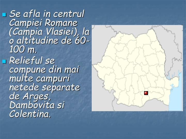 Se afla in centrul Campiei Romane (Campia Vlasiei), la o altitudine de 60-100 m.
