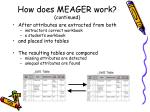 how does meager work continued