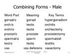 combining forms male
