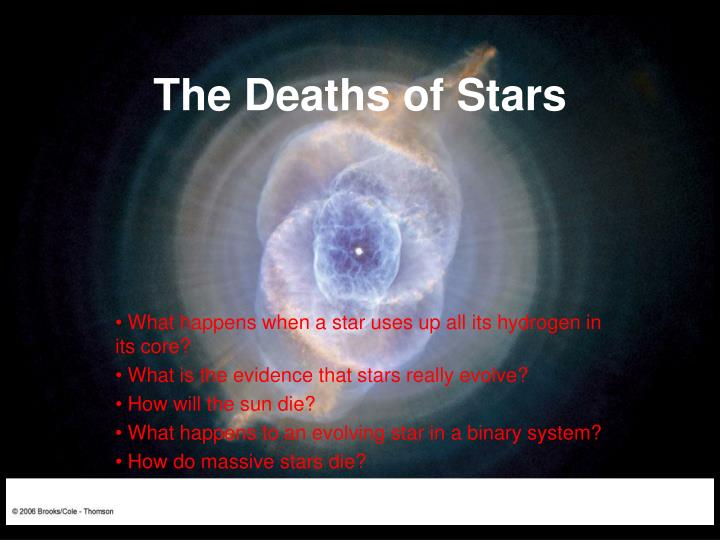 the deaths of stars n.