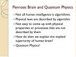 penrose brain and quantum physics