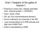 orai1 keepers of the gates of heaven