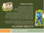 vala sk d dictv37