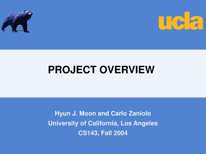 project overview n.