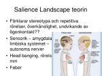 salience landscape teorin