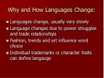 why and how languages change