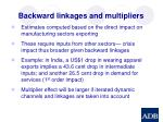 backward linkages and multipliers