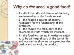 why do we need a good food