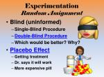 experimentation random assignment1