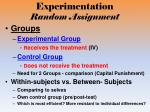experimentation random assignment2