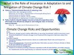 what is the role of insurance in adaptation to and mitigation of climate change risk
