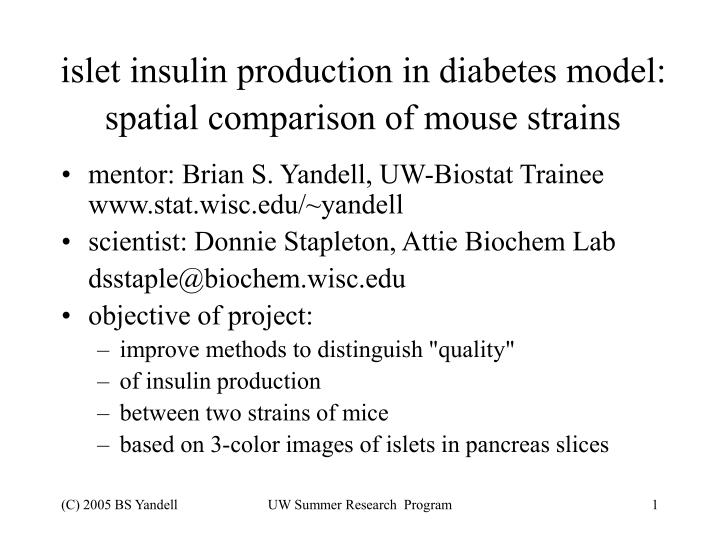 islet insulin production in diabetes model spatial comparison of mouse strains n.