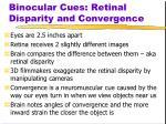 binocular cues retinal disparity and convergence