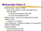 monocular cues 2