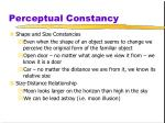 perceptual constancy1