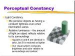 perceptual constancy2