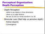perceptual organization depth perception
