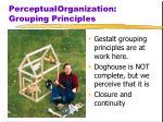 perceptual organization grouping principles1
