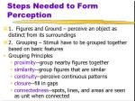 steps needed to form perception