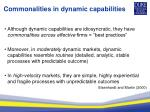 commonalities in dynamic capabilities