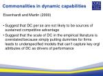commonalities in dynamic capabilities1