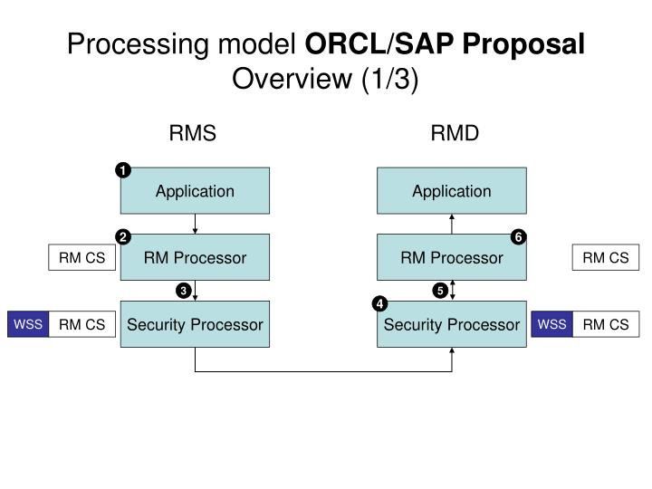 processing model orcl sap proposal overview 1 3 n.