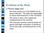 evolution of the heart2