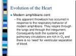 evolution of the heart7
