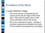 evolution of the heart8