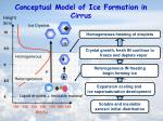 conceptual model of ice formation in cirrus
