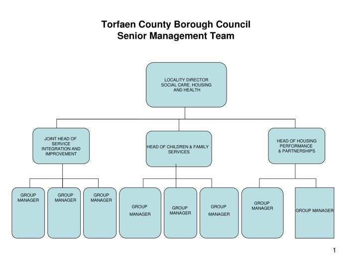 torfaen county borough council senior management team n.