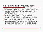 penentuan standar sdm