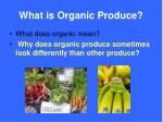 what is organic produce