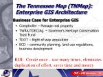 business case for enterprise gis