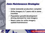data maintenance strategies