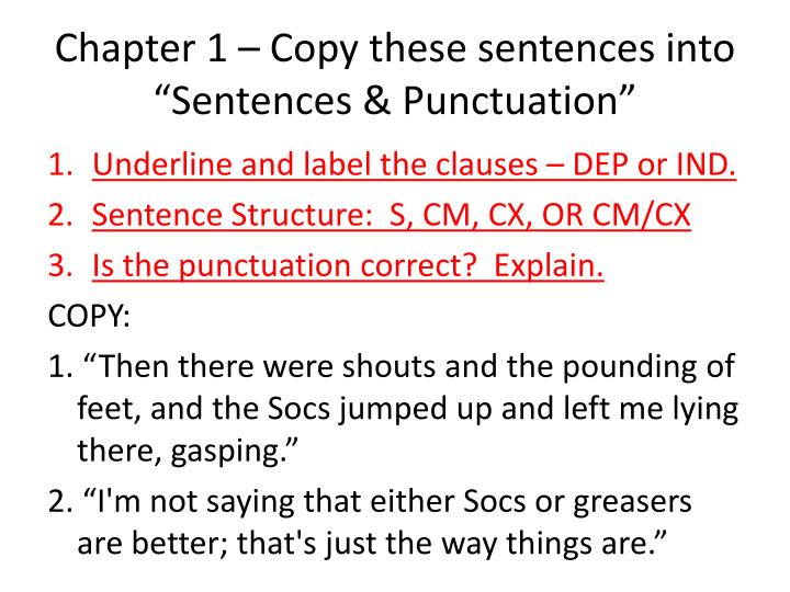 chapter 1 copy these sentences into sentences punctuation n.