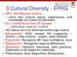 3 cultural diversity eprg