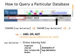 how to query a particular database