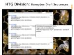 htg division honeybee draft sequences