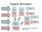 organic simulation