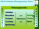mpi f r molekulare pflanzenphysiologie mission