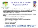 the african aids vaccine programme aavp