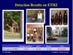 detection results on ethz