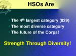hsos are
