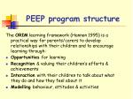 peep program structure