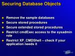 securing database objects
