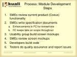 process module development steps
