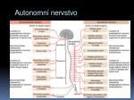 autonomn nervstvo
