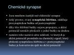 chemick synapse